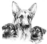 German Shepherd and Pups Puppy Receipt Book